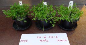 زندگی در مریخ تبدیل به یک واقعیت می شود